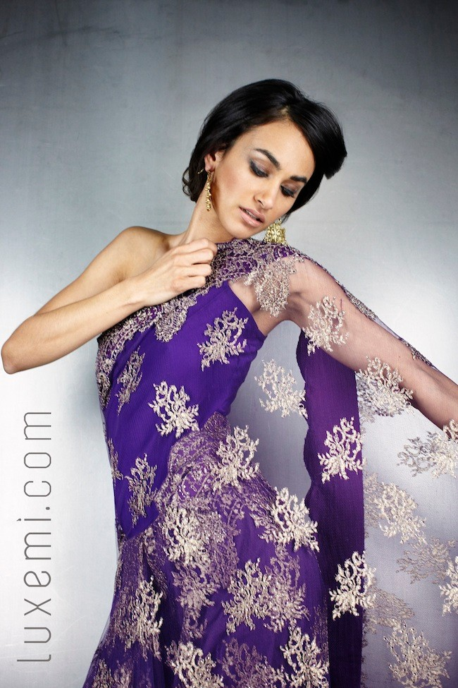 Lessons in lace rocking a lace saree the big fat indian wedding lace sarees while glamorous are more delicate than your average saree aloadofball Gallery