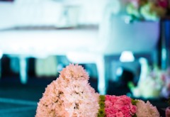 9 Ways Carnations Will Make Your Wedding Dramatic