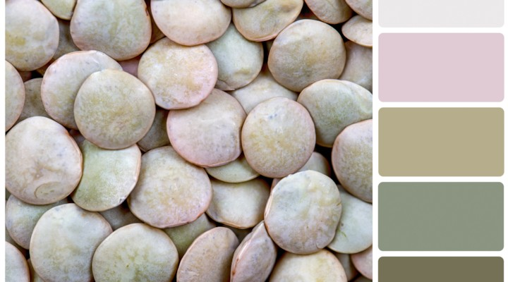Sweet Olive Crush {Color Palette Monday}