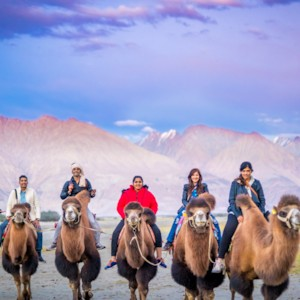 A Wedding at 14,000 Feet: Pangong Tso Lake in Ladakh